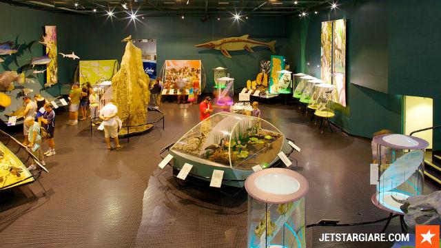 Vé máy bay giá rẻ đi Darwin hang Jetstar